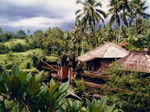 indonesie ecotourisme village 300x225 photo